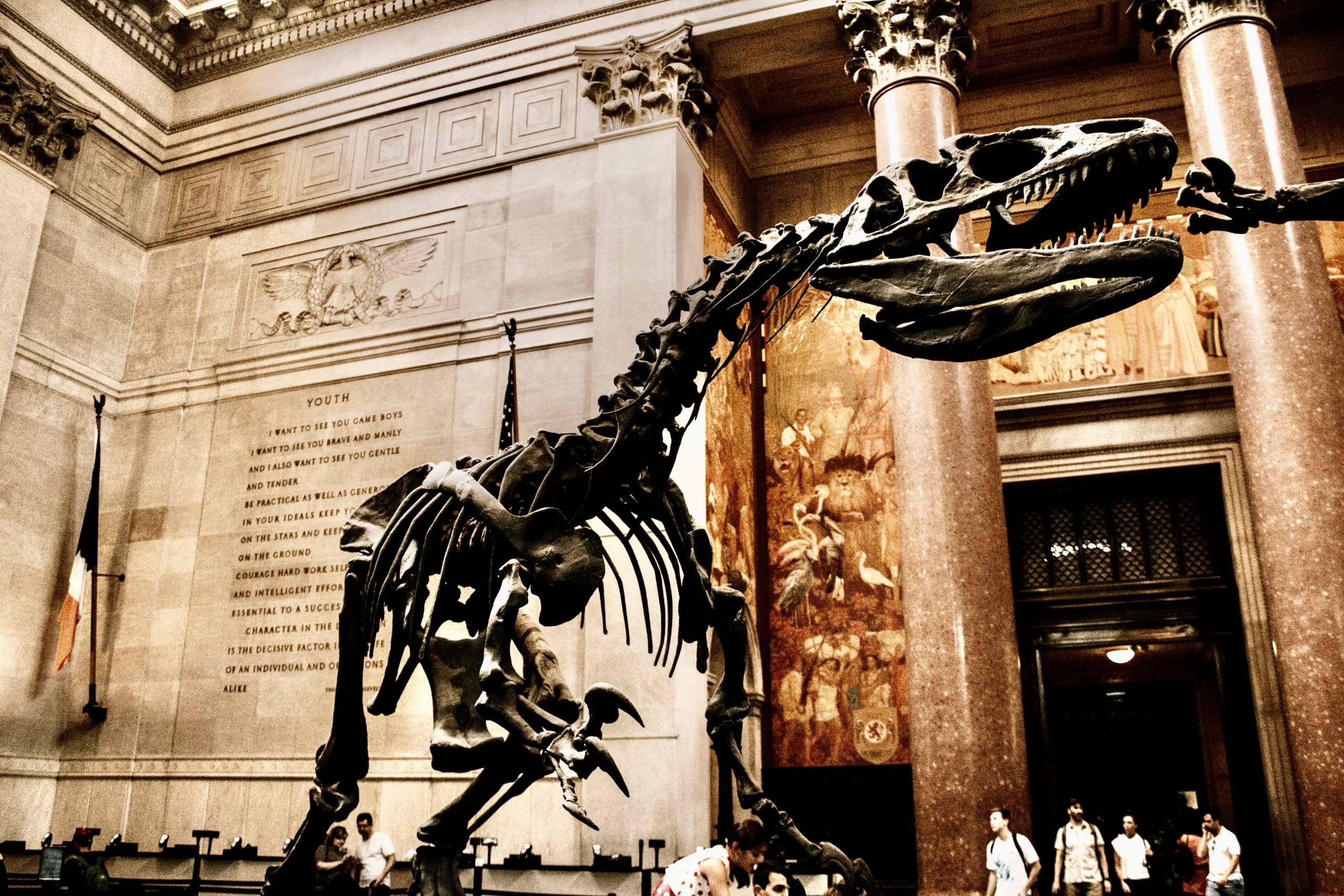 American Museum of Natural History is a great place to take the kids when visiting NYC!