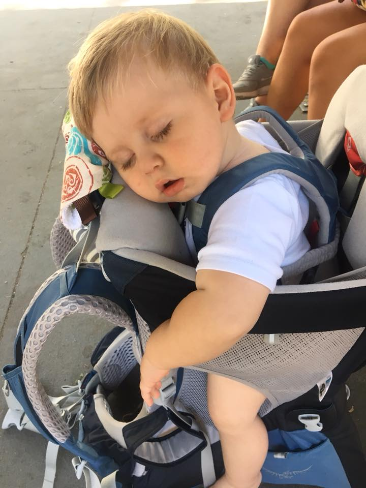 baby napping in carrier photo by patricia forman
