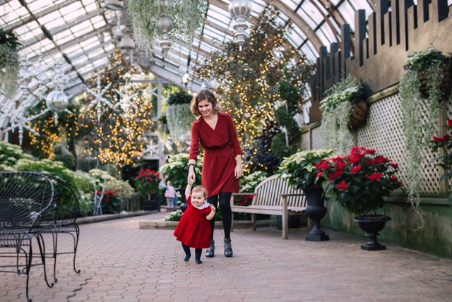 Winter show at the Lincoln Park conservatory