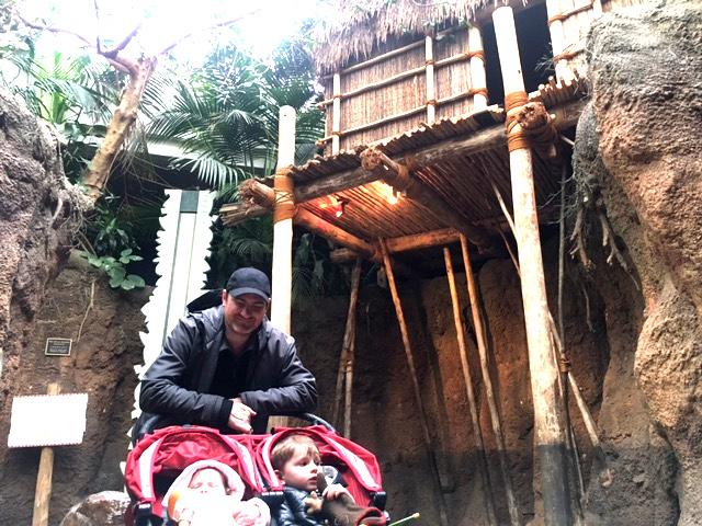 Regenstein African Journey family friendly stroller