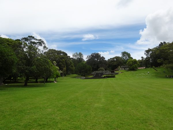 Cornwall Park Auckland green space