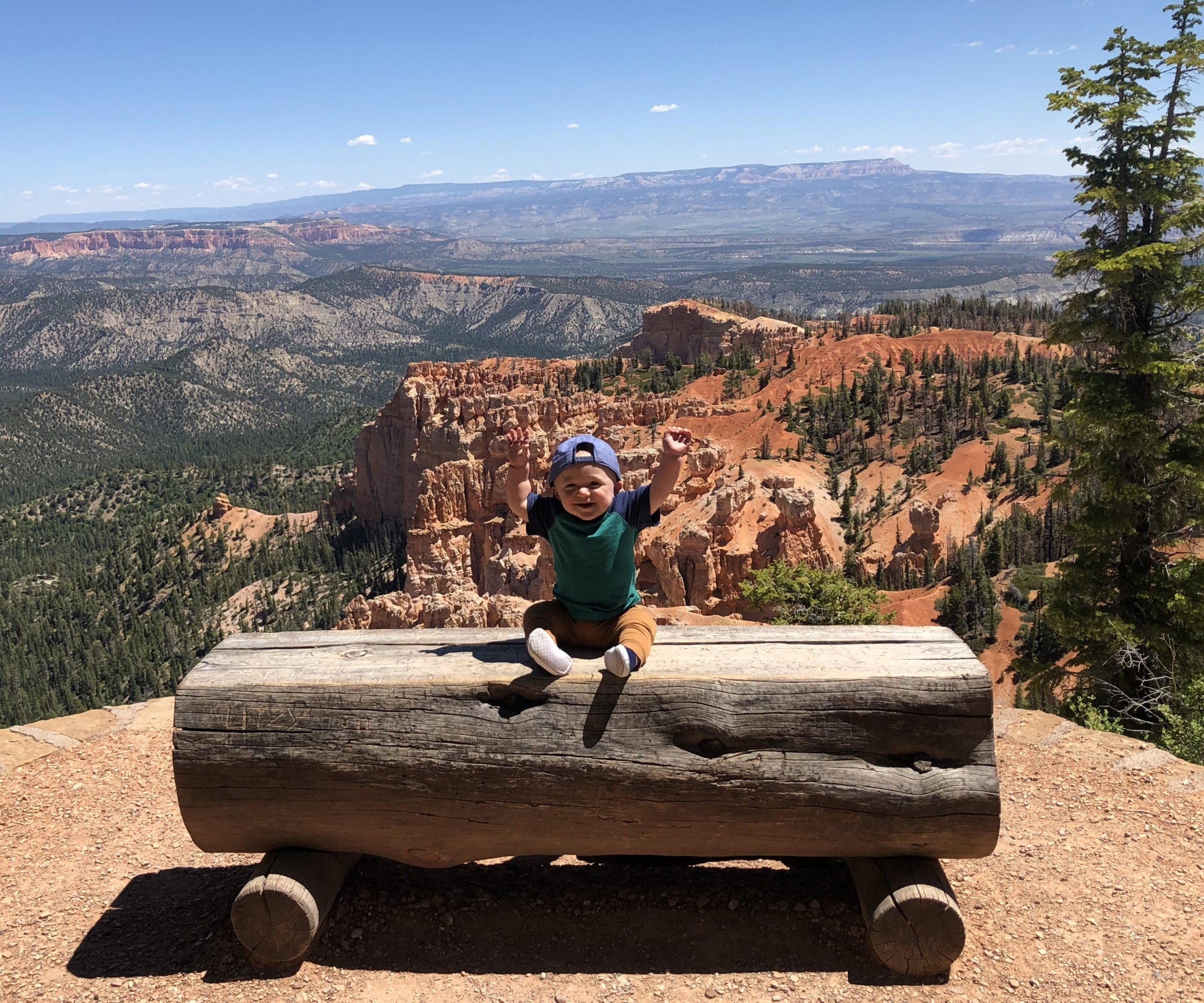 baby sitting on a bench in a national park