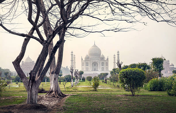 View of the Taj Mahal from Mehtab Bagh in India