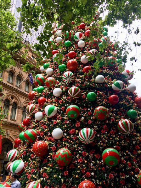 Christmas Tree at Martin Place Sydney