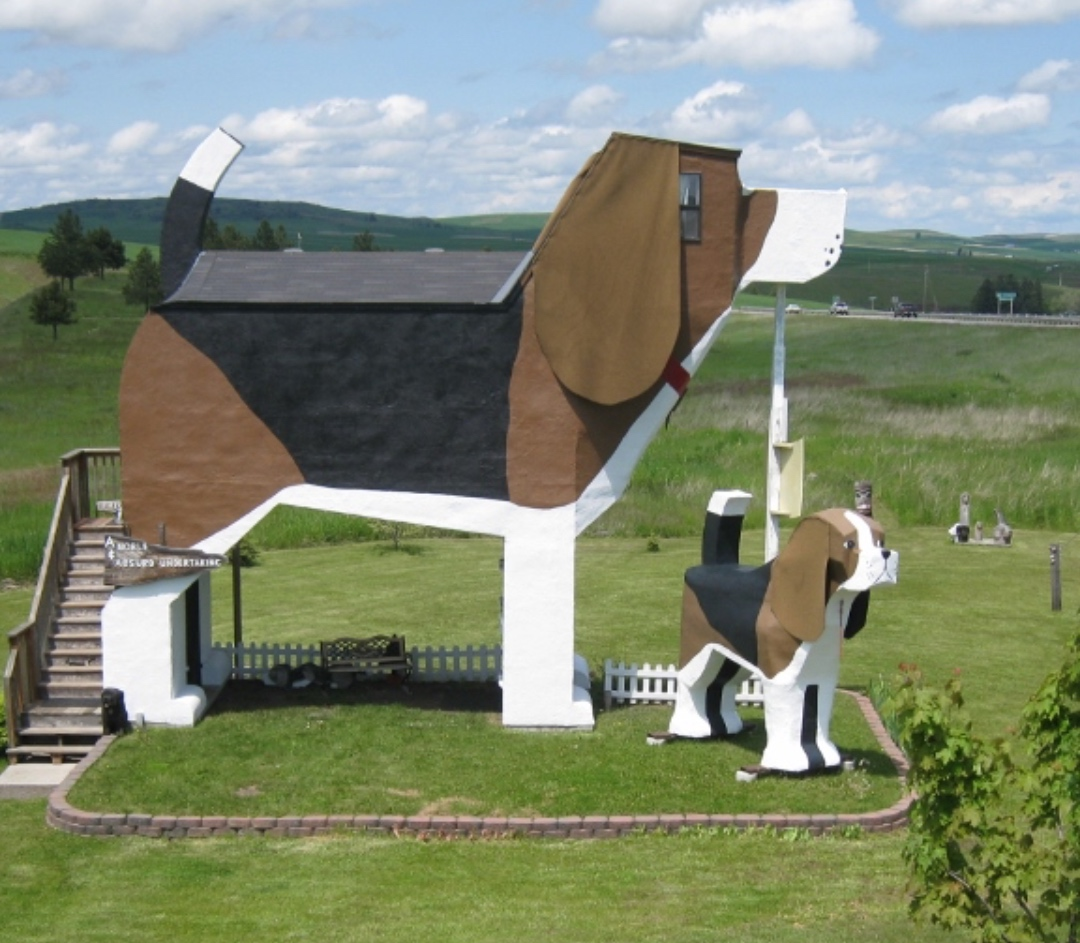 The Dog Bark Park in Cottonwood, Idaho is a unique and great place to stay with the family!