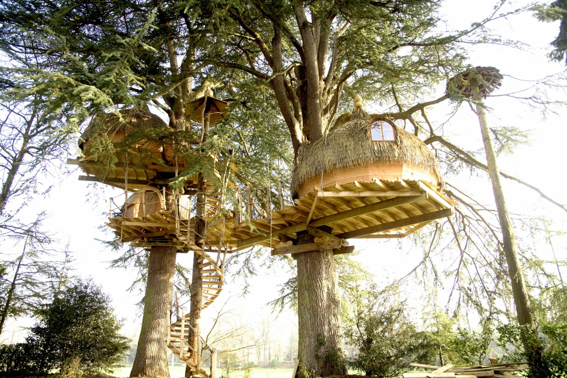 Stay in a treehouse in Domaine Des Ormes
