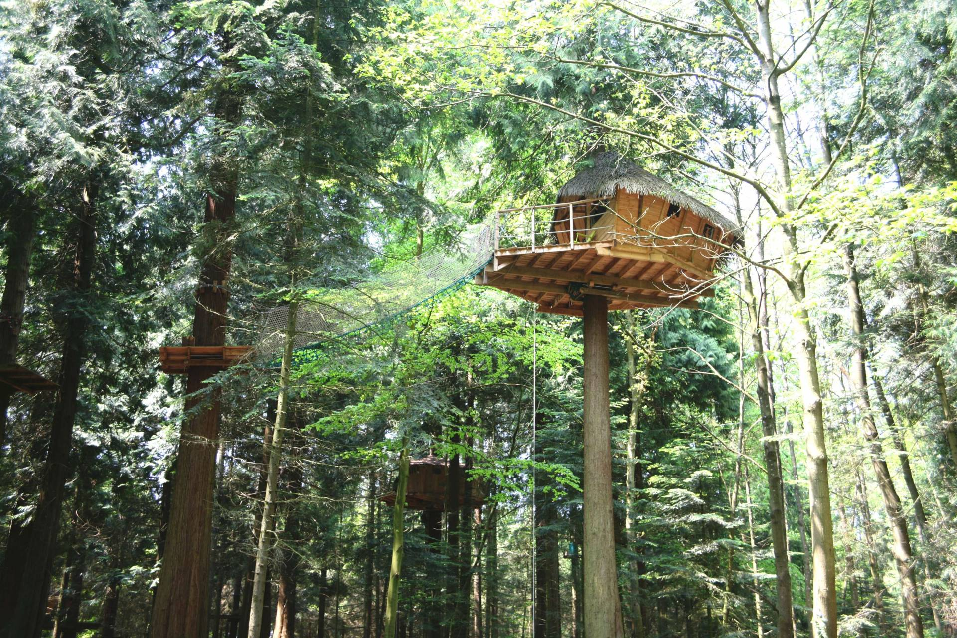 stay in a treehouse in Brittany, France
