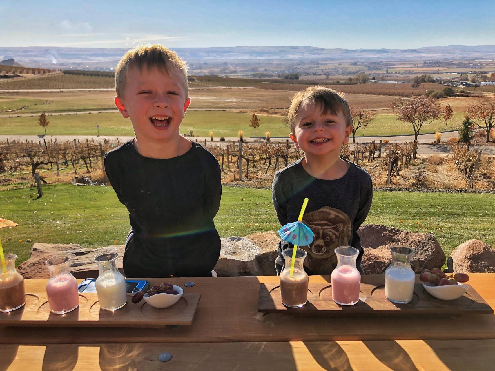Ste. Chapelle Winery has milk flights for the kids, making it a great stop when visiting Boise!