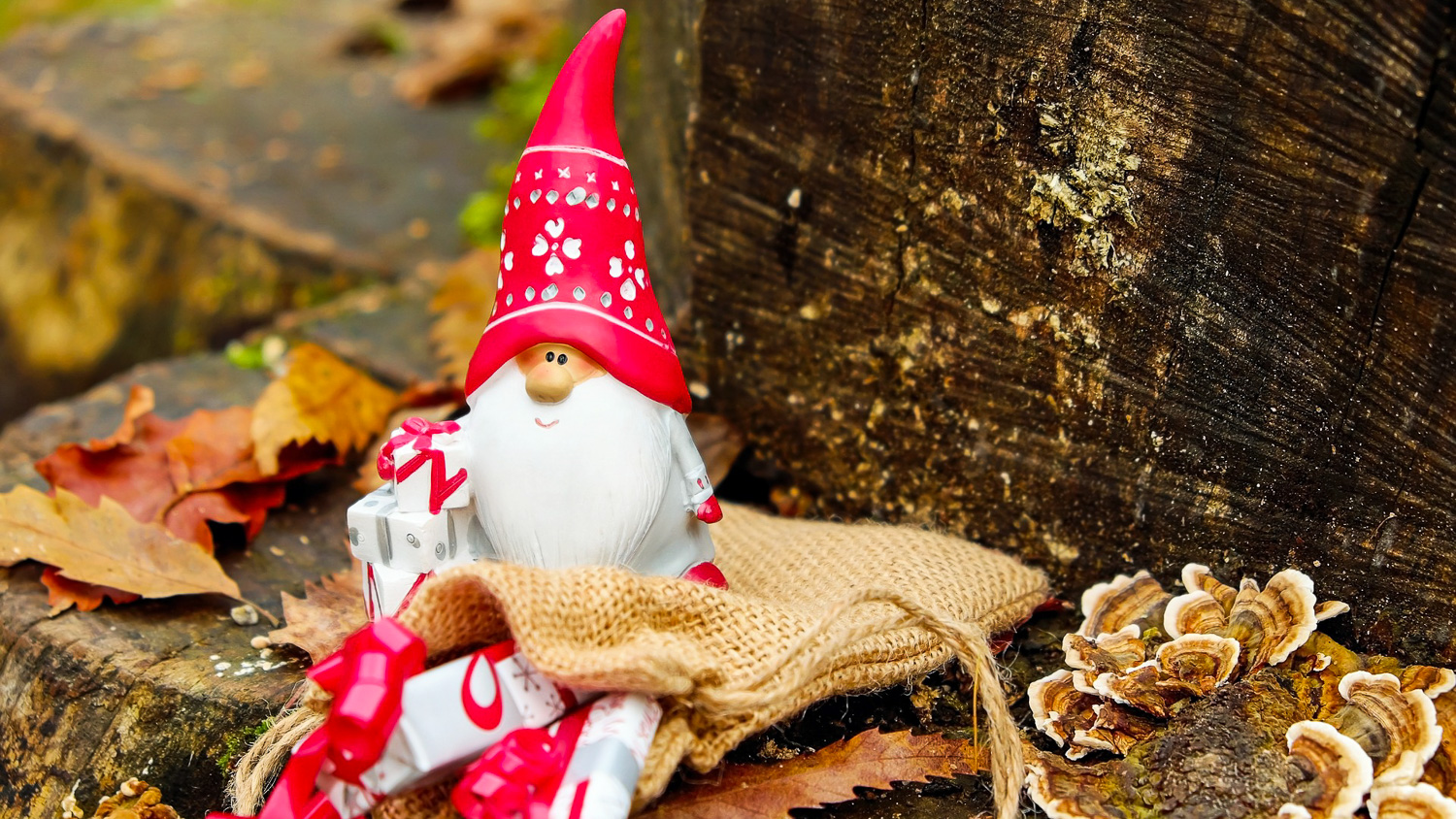 A very Nordic Christmas! Learn about traditions from around the world!