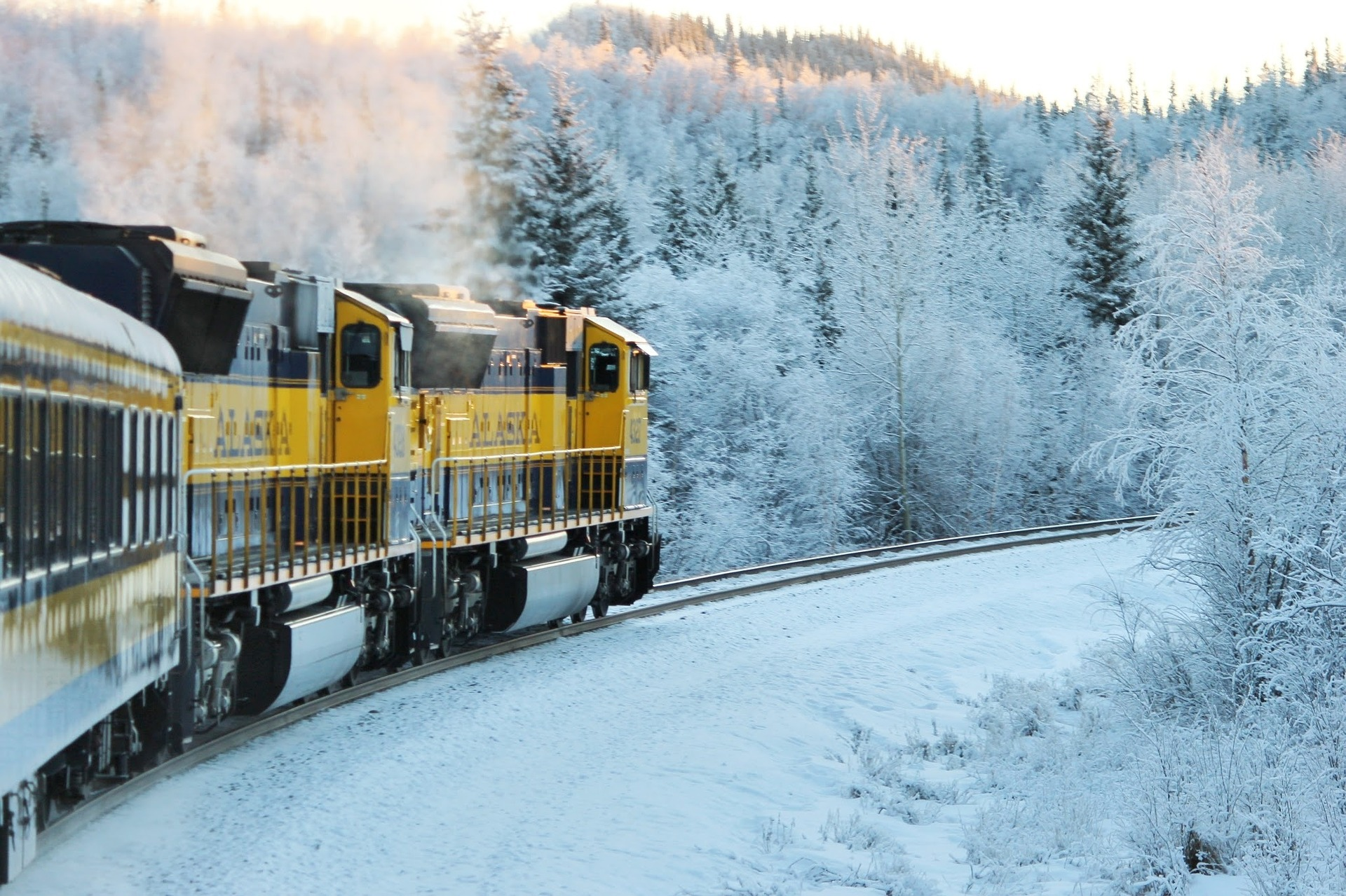 5 best winter train rides that your entire family will enjoy!